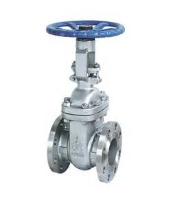 data flg wedge gate valve 1