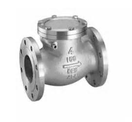 data flg swing check valve 1